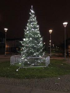 Brinnington Tree 2018